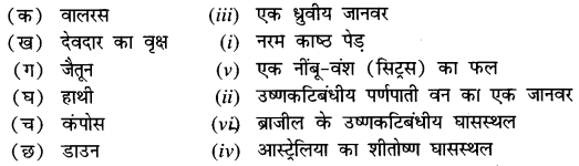 NCERT Solutions for Class 7 Social Science Geography Chapter 6 (Hindi Medium) 2