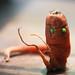 Meet Mister Carrot