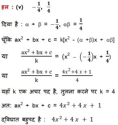 NCERT Maths Solutions For Class 10 Chapter 2 Polynomial 2.2 24