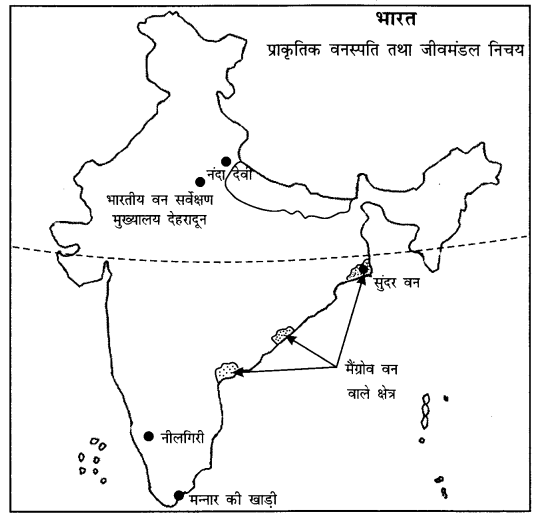 NCERT Solutions for Class 11 Geography Indian Physical Environment Chapter 5 (Hindi Medium) 1