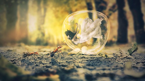 Bubble Ant Dream 4K