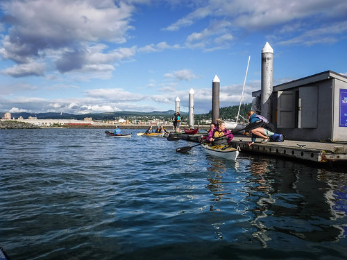 Bellingham Harbor with Moondance Kayaks-48