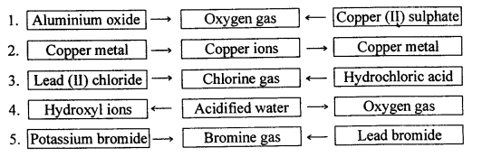 ICSE Solutions for Class 10 chemistry Electrolysis 28