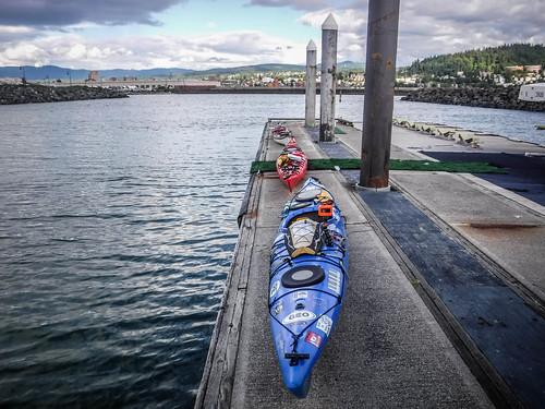 Bellingham Harbor with Moondance Kayaks-40