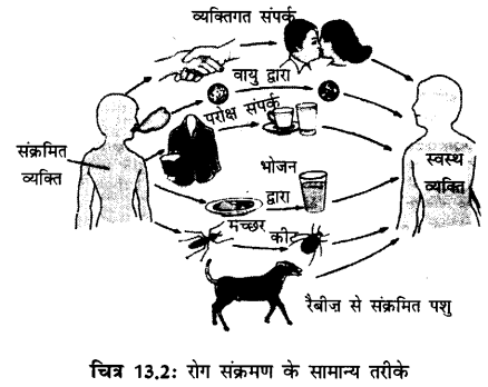 NCERT Solutions for Class 9 Science Chapter 13 (Hindi Medium)