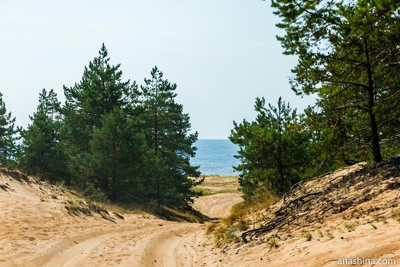 Дорога через дюну, Балтийское море
