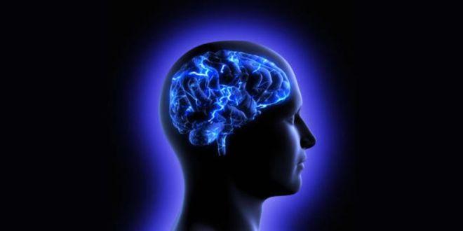 mémoire-application-acétylcholine-cognition