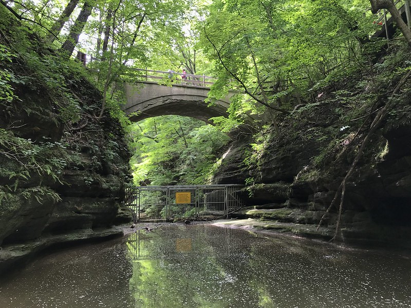 Pedestrian bridge at Matthiessen State Park