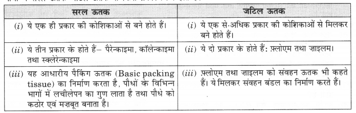 NCERT Solutions for Class 9 Science Chapter 6 (Hindi Medium) 2