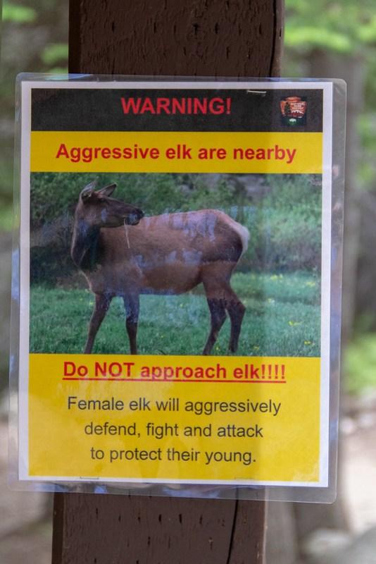 Elk Warning