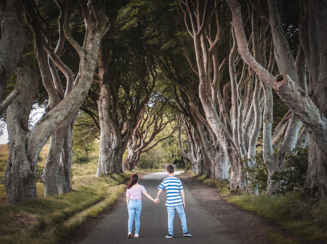The Dark Hedges, Irlanda del Nord