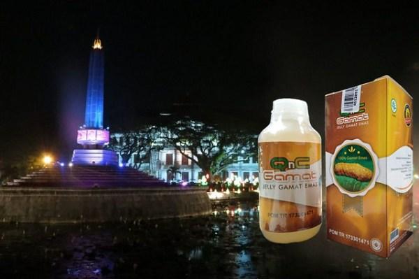 Distributor Cabang Resmi QnC Jelly Gamat Kota Malang