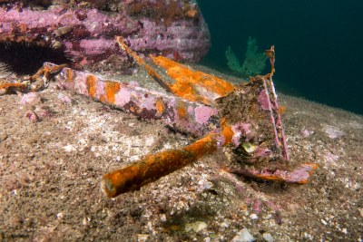Back to nature - Rusty anchor #marineexplorer