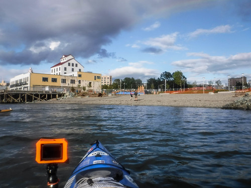 Bellingham Harbor with Moondance Kayaks-58