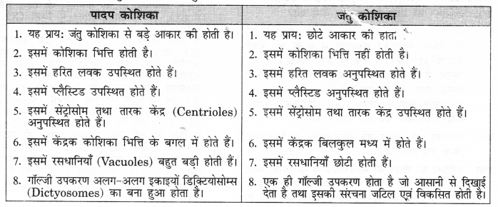 NCERT Solutions for Class 9 Science Chapter 5 (Hindi Medium) 2