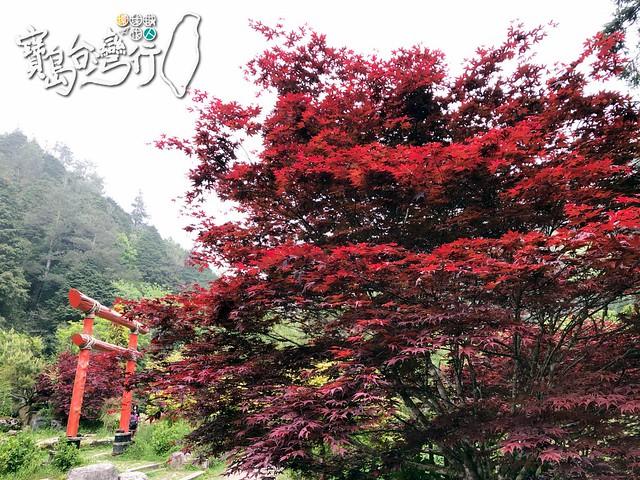 TaiwanTour_350