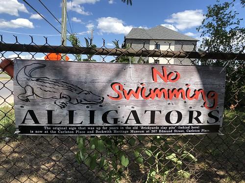 Carleton Place - No Alligators