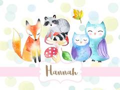 Watercolor Animals - Woodlands