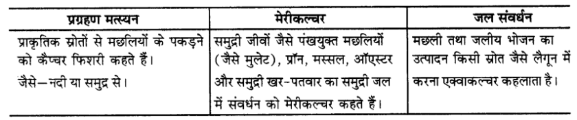 UP Board Solutions for Class 9 Science Chapter 15 Improvement in Food Resources 241 9