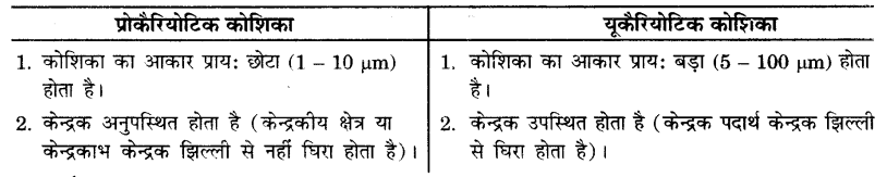 UP Board Solutions for Class 9 Science Chapter 5 The Fundamental Unit of Life 75 2