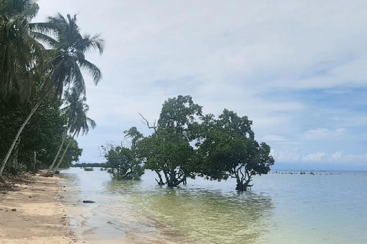 Hartman Beach, 50+ Things to Do in Puerto Princesa, Tourist Spots Survive Travel (6)
