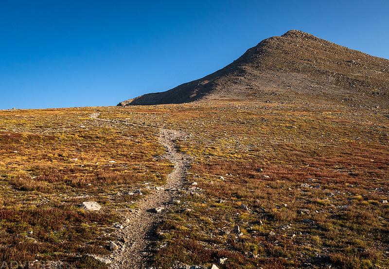 Trail To Shavano