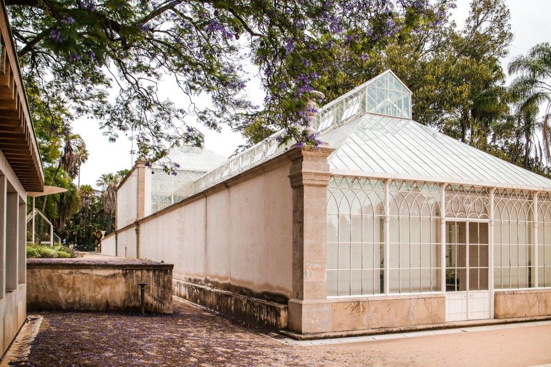 Giardino botanico di Coimbra
