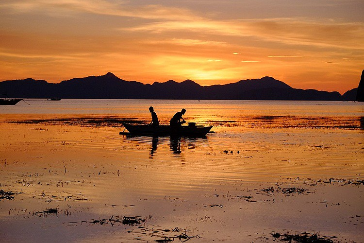 Corong Corong Beach, El Nido Island Hopping Tours, Survive Travel (32)
