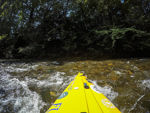 French Broad River - Rosman to Island Ford-5