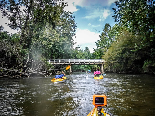 French Broad River - Rosman to Island Ford-213