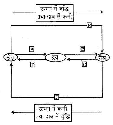 UP Board Solutions for Class 9 Science Chapter 1 Matter in Our Surroundings 14 9