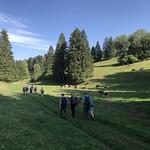 2018-09-12 Lac Vert (64)