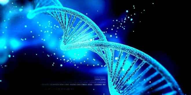 nouvelle-technique-CRISPR-Cas9