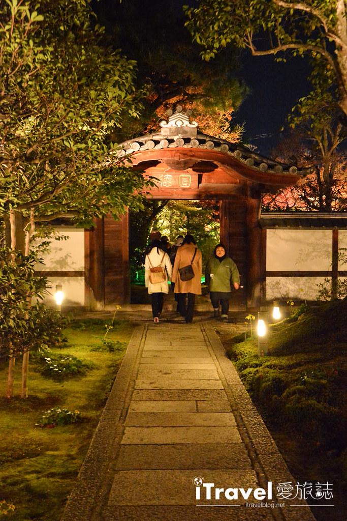 京都賞楓景點 圓德院 (6)