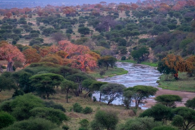 Sunset over the Tarangire River