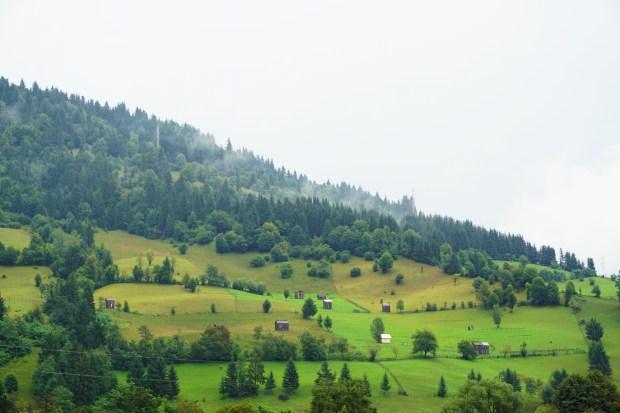 Hills around the village of Farcașa, Neamț county