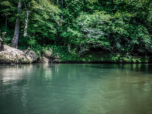French Broad River - Rosman to Island Ford-226