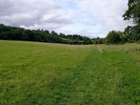 Freshford Walk