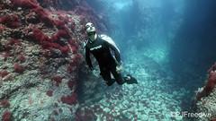 Andrei_fun_diving
