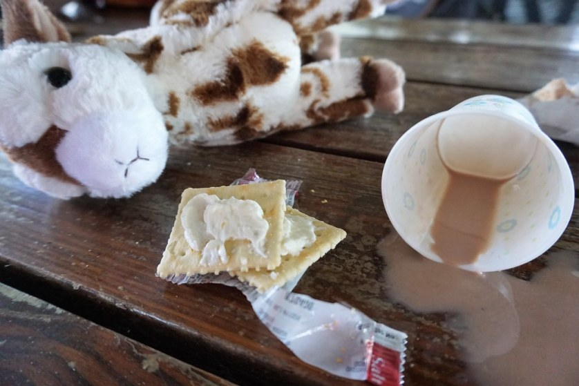 Just-Made Butter and Spilt Chocolate Milk at Dakin Dairy Farms in Myakka City, Fla., Aug. 4, 2018