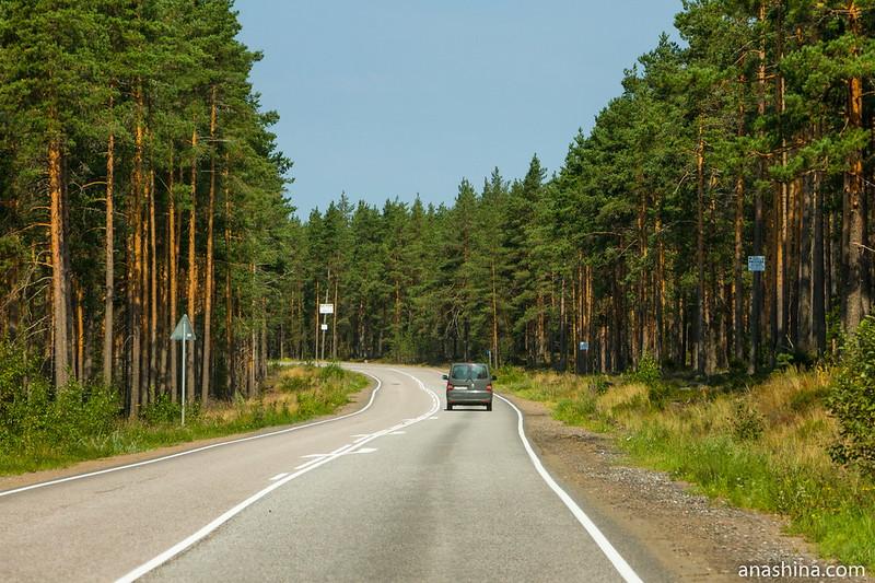 Дорога на Приморск