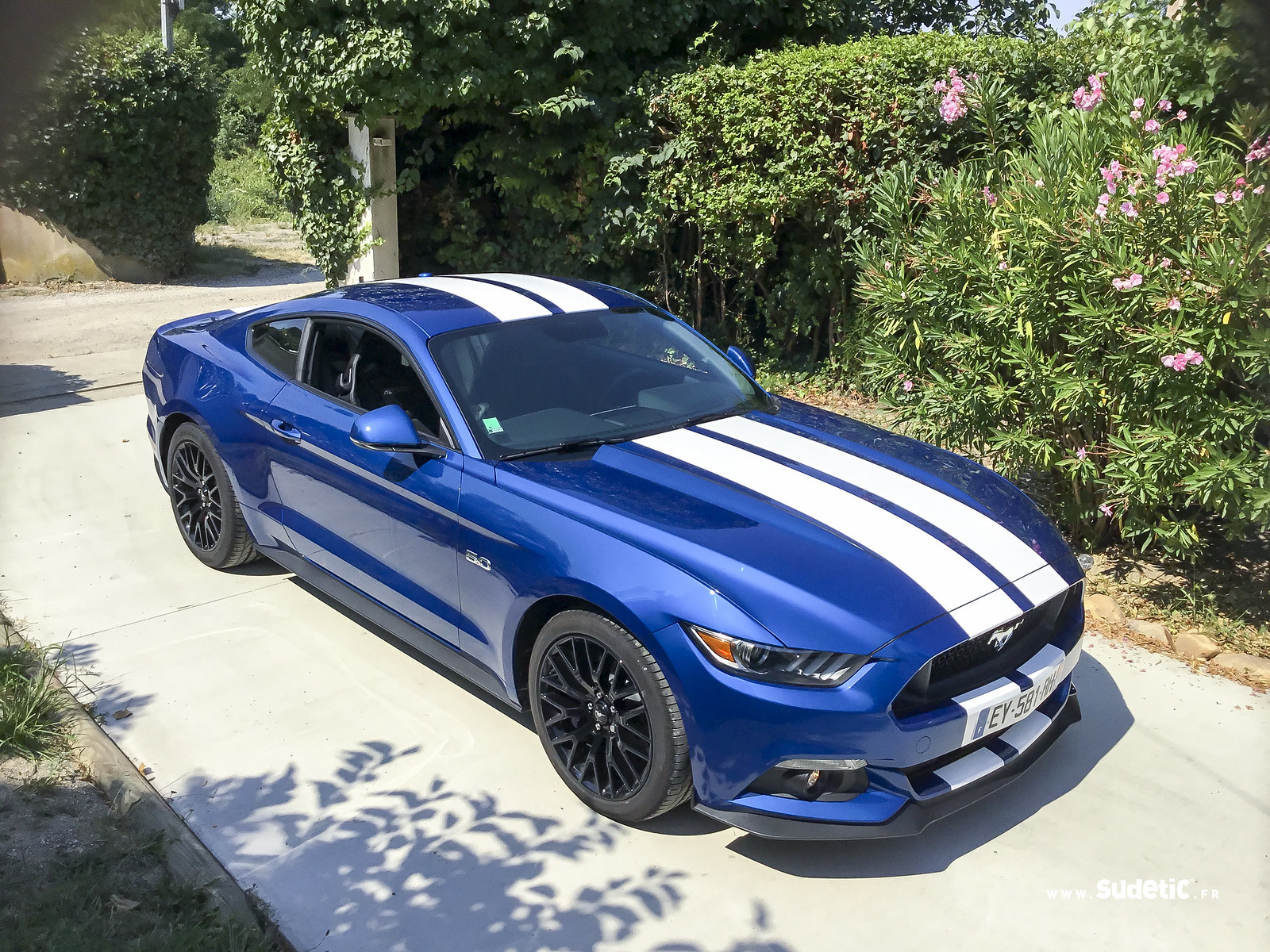 Sudetic bandes blanches Ford Mustang-2