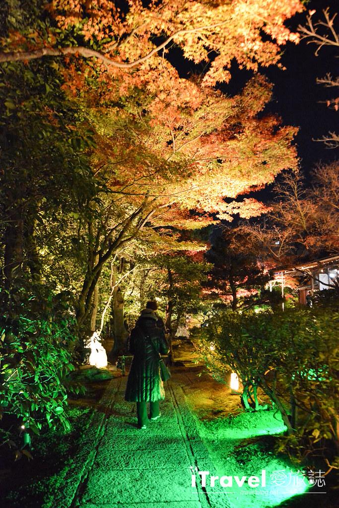京都賞楓景點 圓德院 (9)