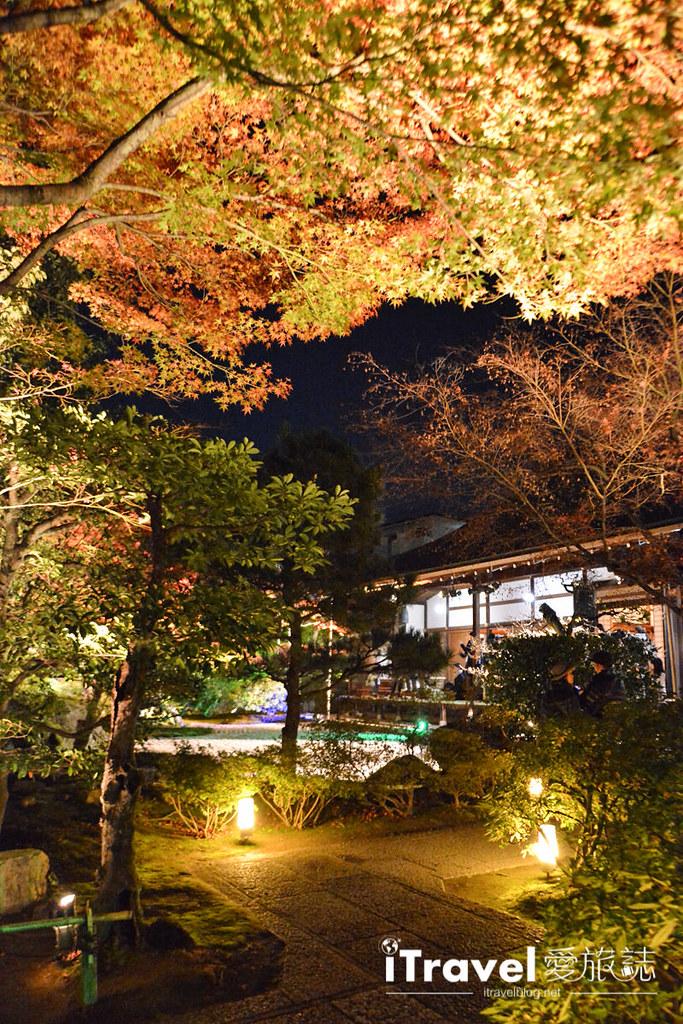 京都賞楓景點 圓德院 (10)