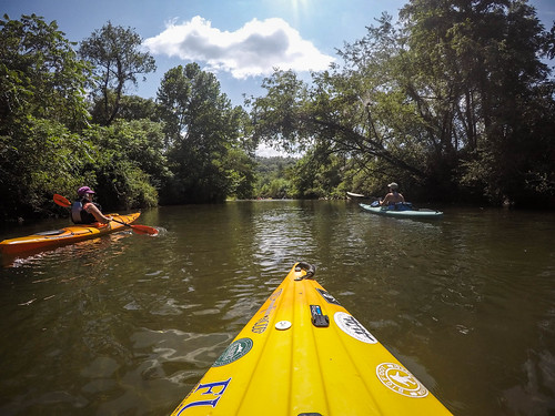 French Broad River - Rosman to Island Ford-23