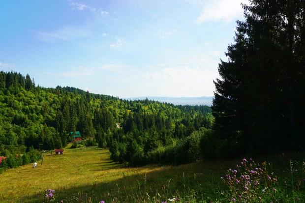 Harghita-Băi, a mountain resort, part of Miercurea-Ciuc