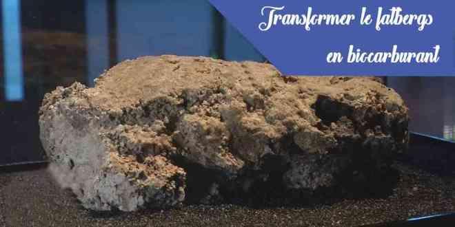 fatbergs-biocarburant