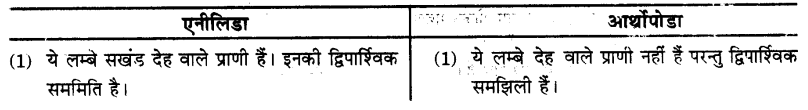 UP Board Solutions for Class 9 Science Chapter 7 Diversity in Living Organisms 105 2