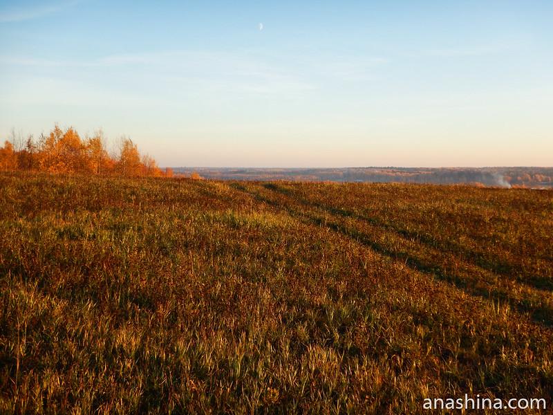 Поле над Икшинским водохранилищем, Московская область