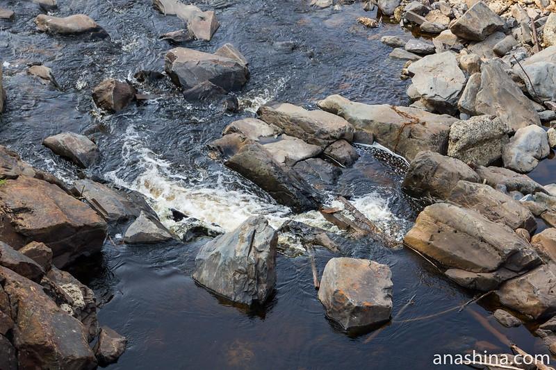 Один из порогов на реке Янисйоки, Карелия, Ляскеля